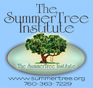 SummerTree Institute